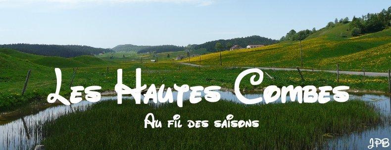 Les Hautes Combes par Jean-Pierre Bouvard - 4/11/2009 Logo