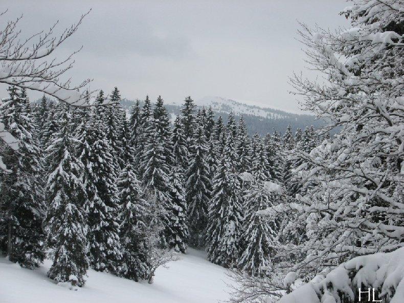 """Une """"baladaski"""" d'Hélène - Le tour du Mont Pela - 20 février 2010 0003"""