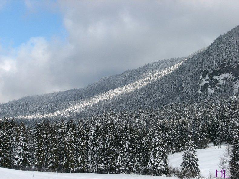 Dimanche de neige dans la vallée de la Valserine - 7 février 2010 0004