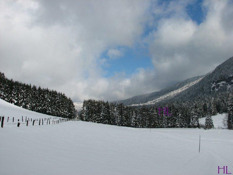 Dimanche de neige dans la vallée de la Valserine - 7 février 2010 0005