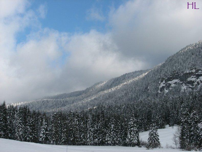 Dimanche de neige dans la vallée de la Valserine - 7 février 2010 0007