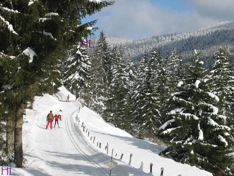 Dimanche de neige dans la vallée de la Valserine - 7 février 2010 0008