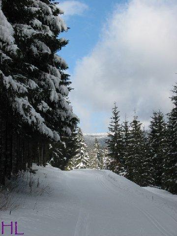 Dimanche de neige dans la vallée de la Valserine - 7 février 2010 0009