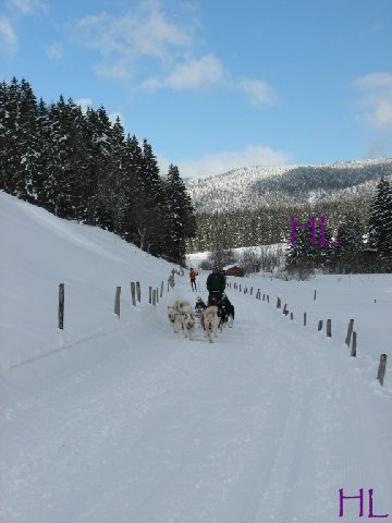 Dimanche de neige dans la vallée de la Valserine - 7 février 2010 0010