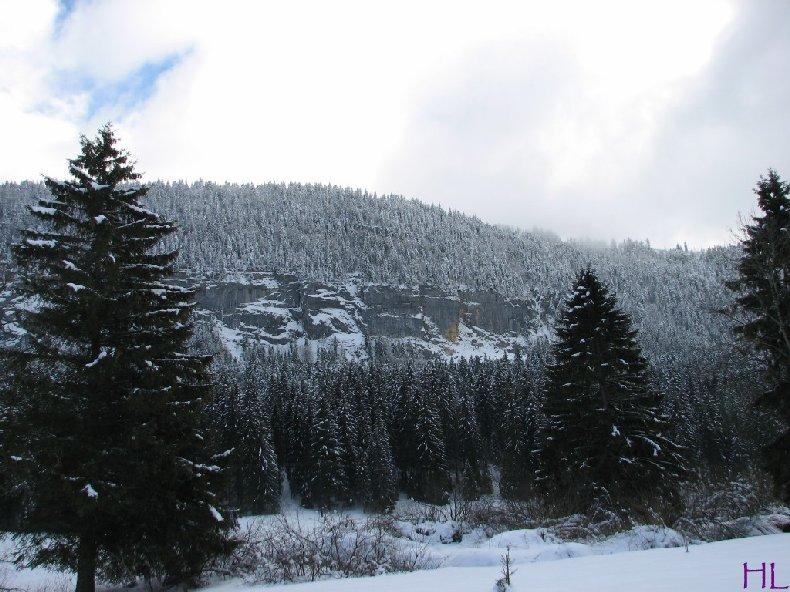 Dimanche de neige dans la vallée de la Valserine - 7 février 2010 0012