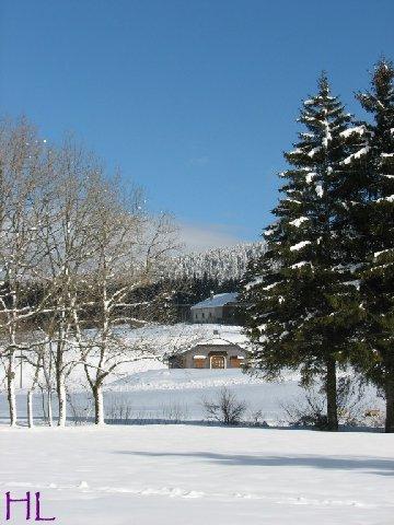 Dimanche de neige dans la vallée de la Valserine - 7 février 2010 0013