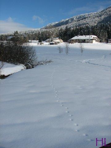 Dimanche de neige dans la vallée de la Valserine - 7 février 2010 0014