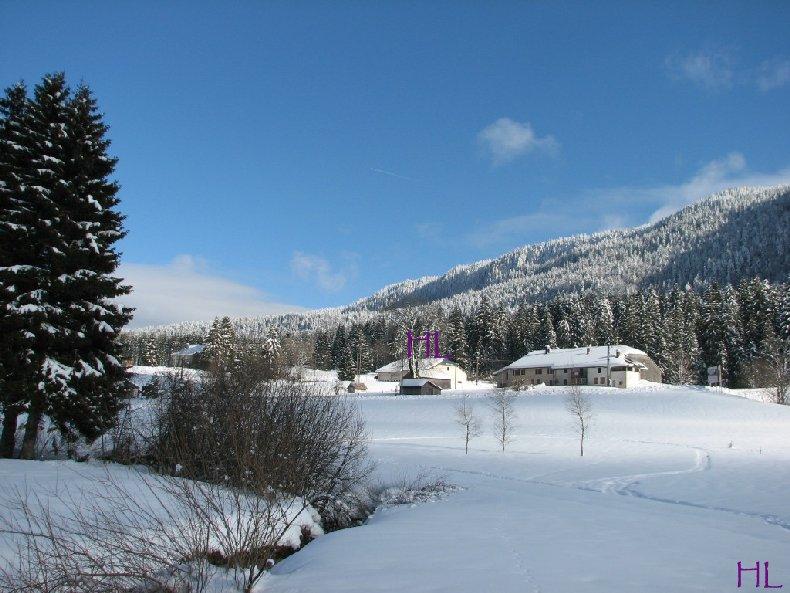 Dimanche de neige dans la vallée de la Valserine - 7 février 2010 0015