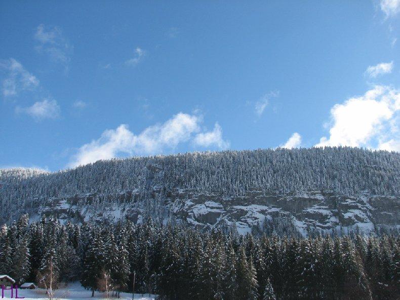 Dimanche de neige dans la vallée de la Valserine - 7 février 2010 0017
