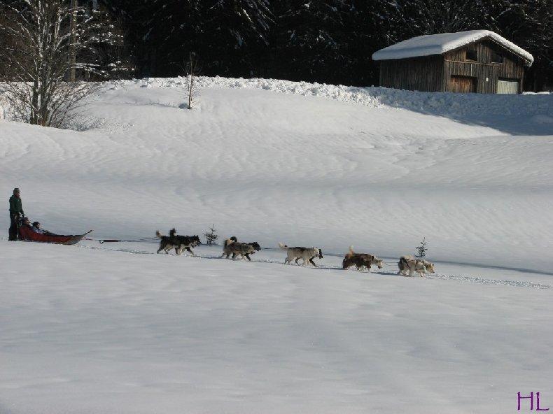 Dimanche de neige dans la vallée de la Valserine - 7 février 2010 0018