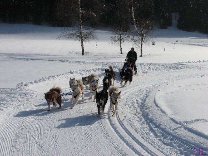Dimanche de neige dans la vallée de la Valserine - 7 février 2010 0019