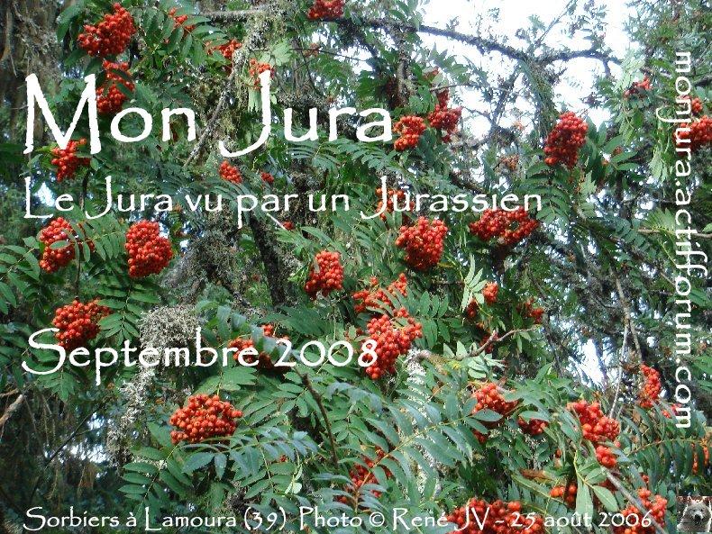 Les archives de la photo d'accueil 2008-09_sorbiers