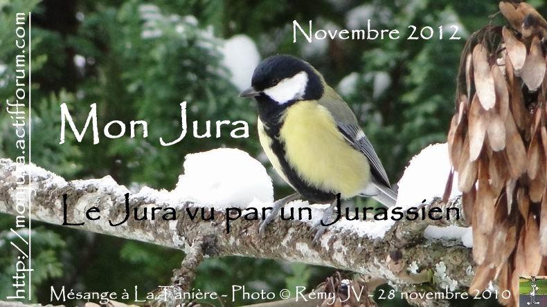 Les archives de la photo d'accueil 2012-11