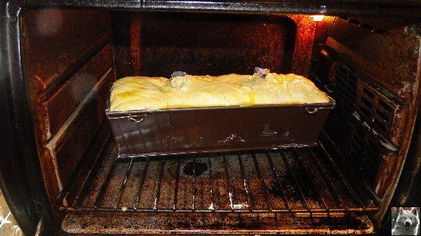 Le Pâté en croûte de Loup Blanc - 21 décembre 2010 0027