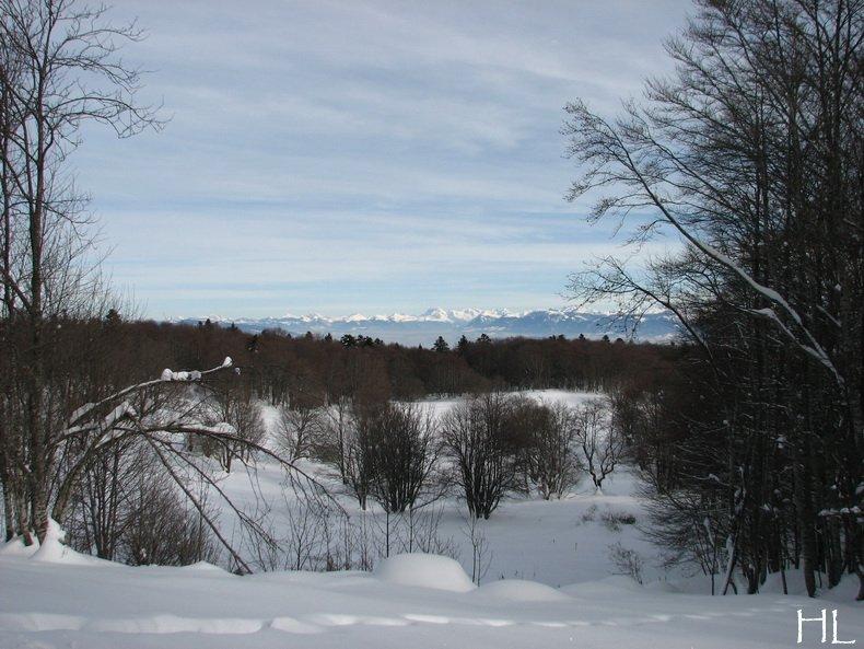 Au sud du Massif Jurassien, le Plateau de Retord 0012