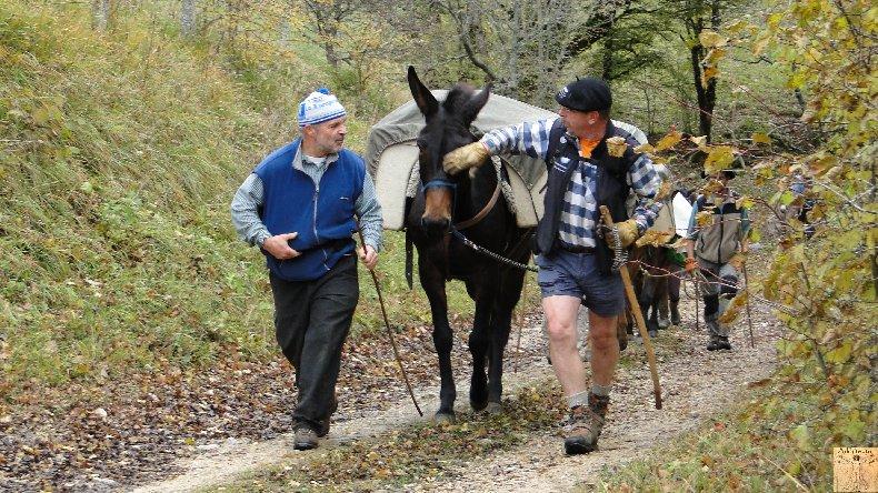 La 13 ème Transhum'âne - 30 - 31 octobre et 1er novembre 2010 0003