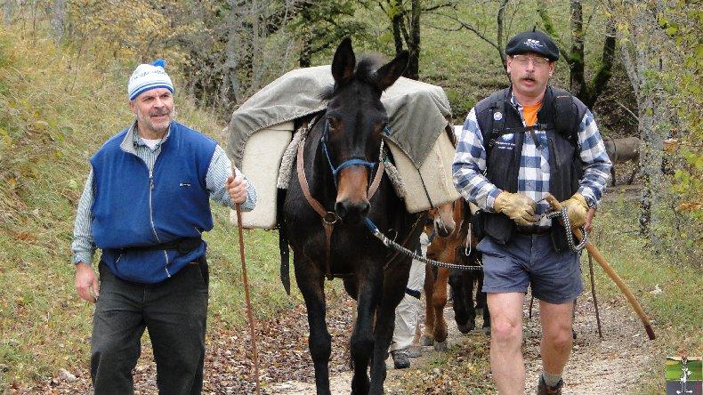 La 13 ème Transhum'âne - 30 - 31 octobre et 1er novembre 2010 0004