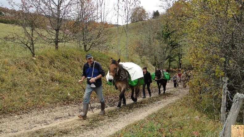 La 13 ème Transhum'âne - 30 - 31 octobre et 1er novembre 2010 0009