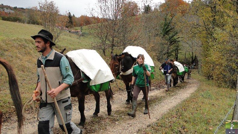 La 13 ème Transhum'âne - 30 - 31 octobre et 1er novembre 2010 0014