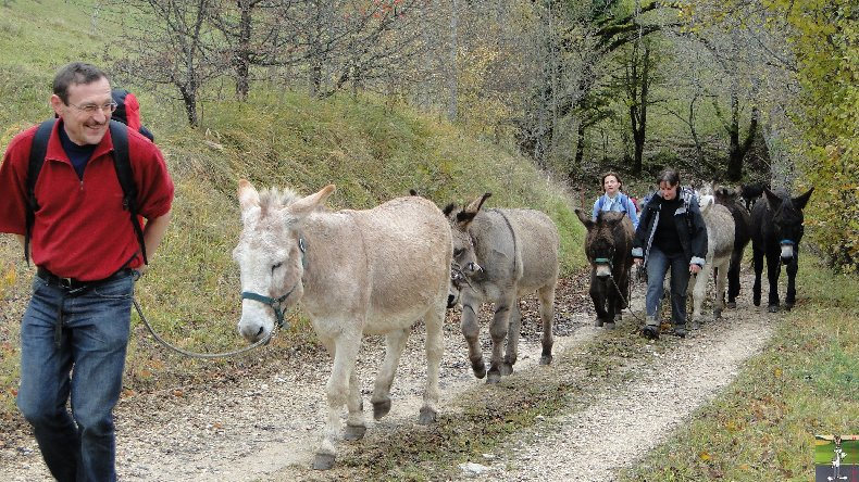 La 13 ème Transhum'âne - 30 - 31 octobre et 1er novembre 2010 0019