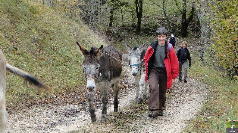 La 13 ème Transhum'âne - 30 - 31 octobre et 1er novembre 2010 0022
