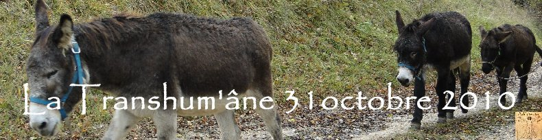 La 13 ème Transhum'âne - 30 - 31 octobre et 1er novembre 2010 Logo